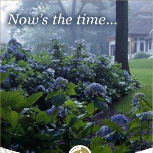 Garden Care Print Advertising