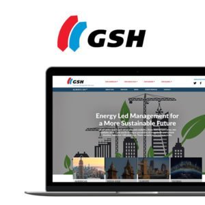 GSH Group Brand Development by Delia Associates
