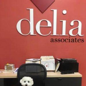 Delia Associates B2B Branding - Jeter
