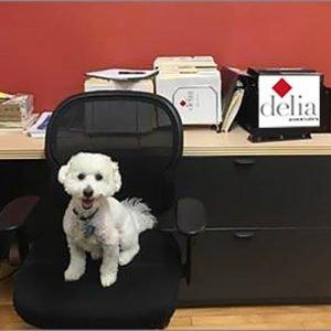 Jeter in front of Delia Associates Logo