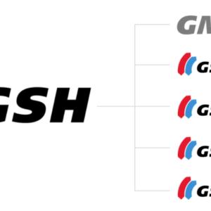 GSH Group Worldwide Logos