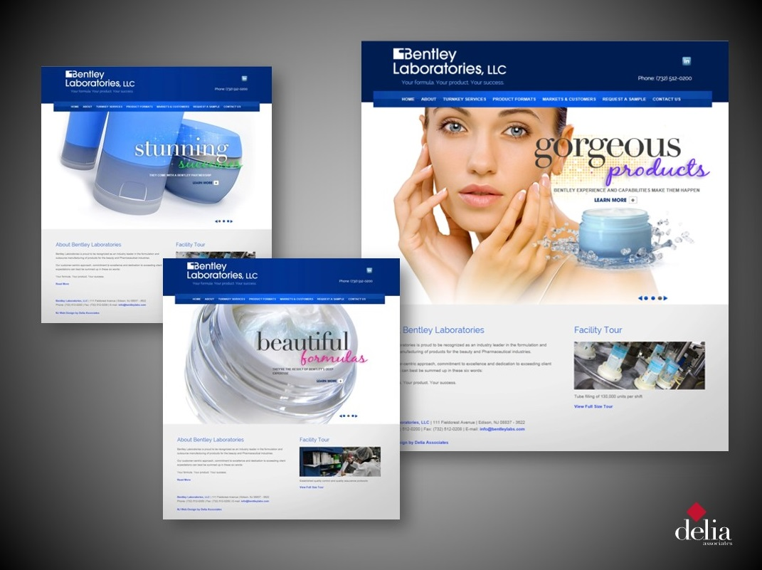 Brand Revitalization for Bentley Labs - Delia Associates