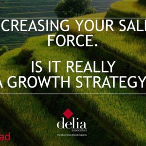 Delia Associates Sales Force Strategy for Business Growth