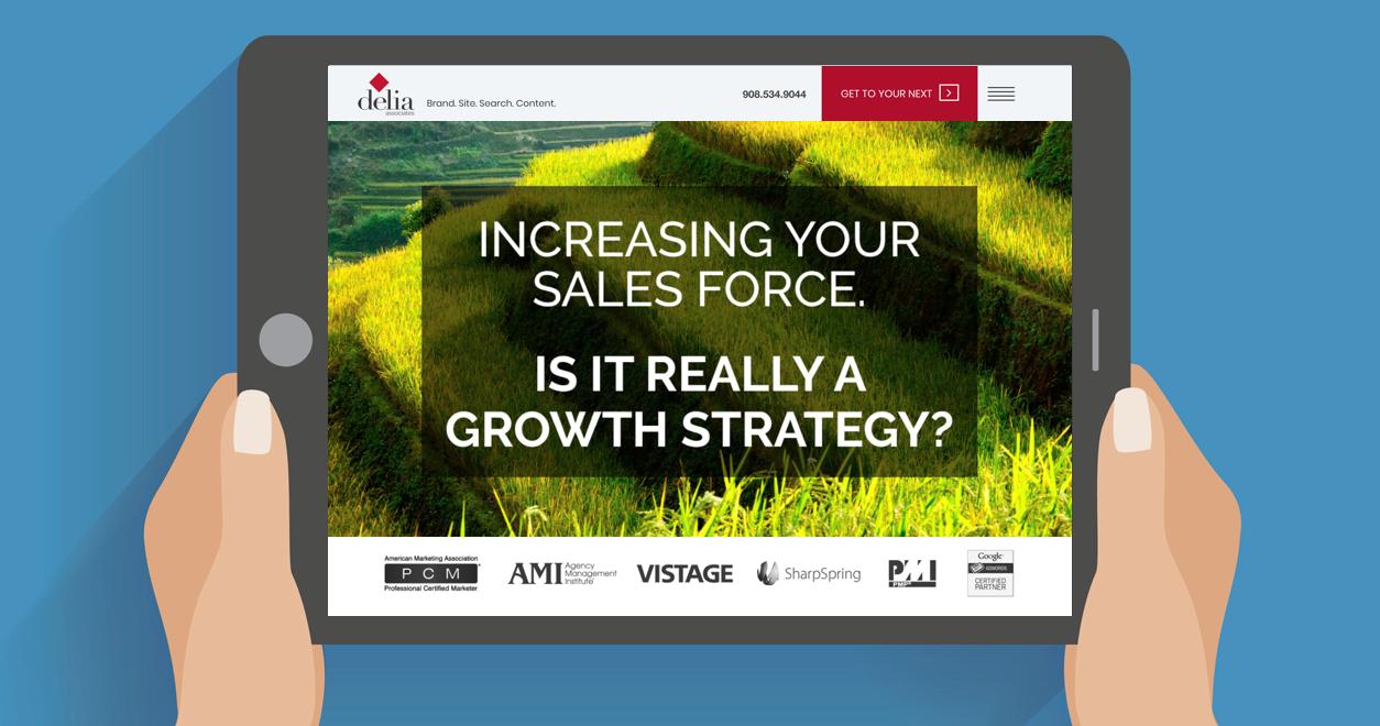Delia Associates Sales Force Strategy