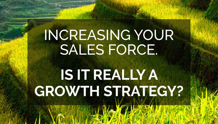 Increase your sales force slide
