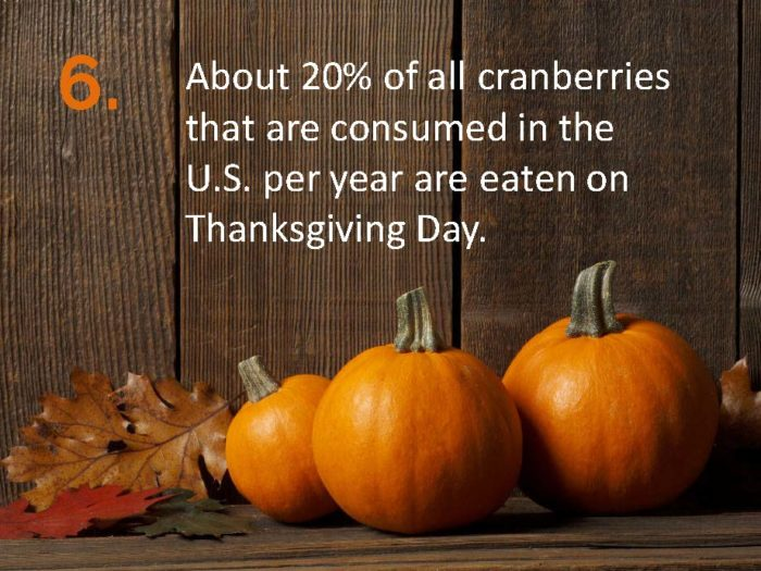Delia Thanksgiving Fun Facts Page 6