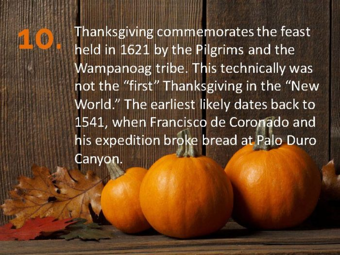 Delia Thanksgiving Fun Facts Page 10