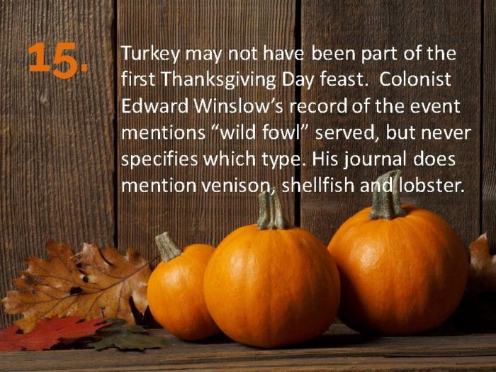 Delia Thanksgiving Fun Facts Page 15