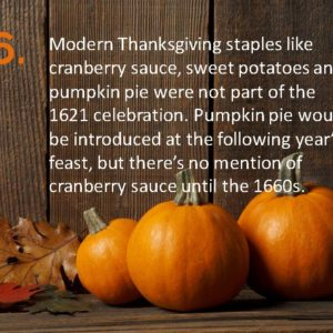 Delia Thanksgiving Fun Facts Page 16